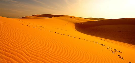 Desert Oasis guided meditation - For deep recharge