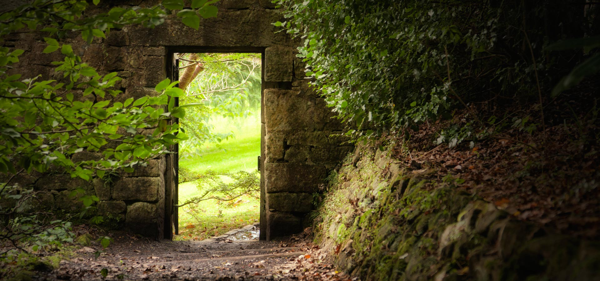 Secret Garden: Secret Garden Meditation For Clarity